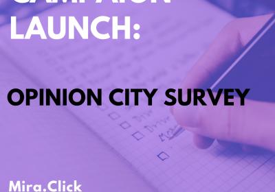 New Campaign: Opinion City Survey