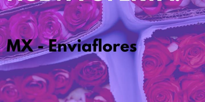 New Campaign: MX – Enviaflores